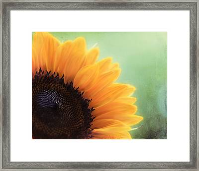Staring Into The Sun Framed Print by Amy Tyler