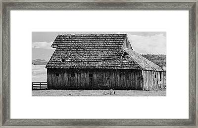 Stark Starkey Framed Print by Lynne and Don Wright