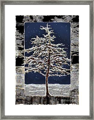 Starlight Framed Print by Ursula Freer