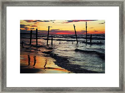 Stay Ashore Framed Print by Barbara McMahon