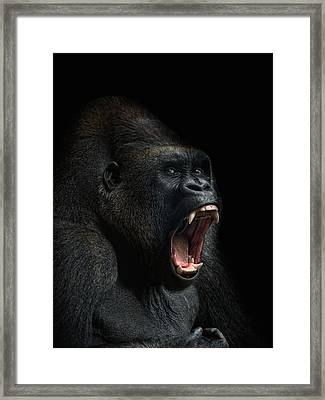 Stay Away Framed Print by Joachim G Pinkawa