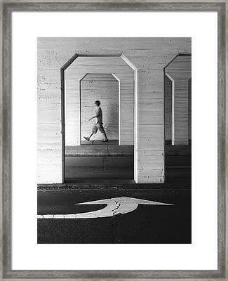 Steadfast Framed Print by Skip Hunt