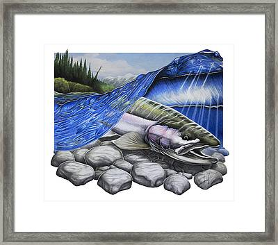 Steelhead Dreams Framed Print by Nick Laferriere