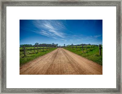 Stella Bella Winery Framed Print by Shari Mattox