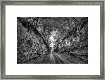 Stenophobia - Black And White Framed Print by Nikolyn McDonald