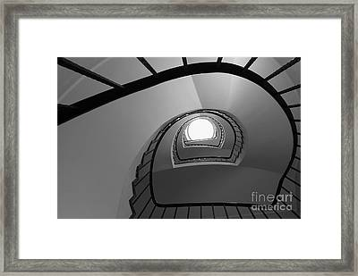 Steppin Up  Framed Print by Hannes Cmarits