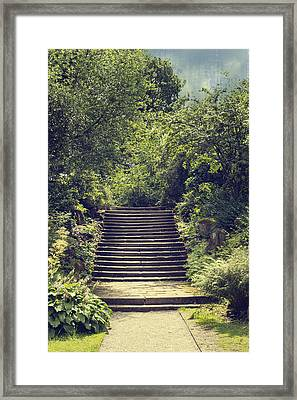 Steps Framed Print by Amanda And Christopher Elwell