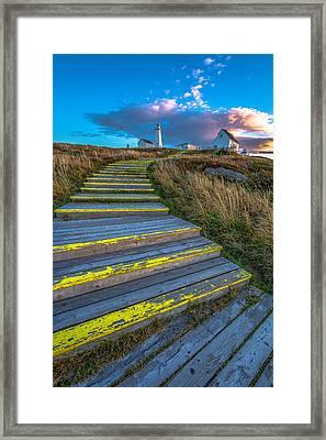 Steps To Cape Spear Framed Print by Gord Follett