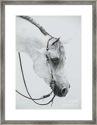 Sterling Framed Print by Joni Beinborn