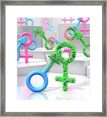 Sti Transmission Framed Print by Animated Healthcare Ltd