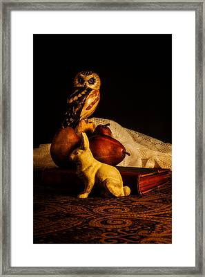 Still Life - Owl Pears And Rabbit Framed Print by Jon Woodhams