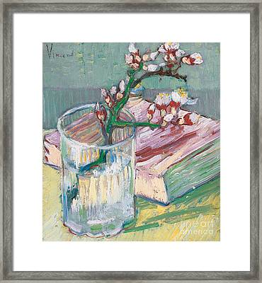 Still Life    A Flowering Almond Branch Framed Print by Vincent Van Gogh