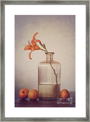 Still Life With Apricots Framed Print by Diana Kraleva