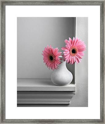Still Life With Pink Gerberas Framed Print by Krasimir Tolev