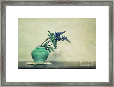 Still Life With Yukon Lupines Framed Print by Priska Wettstein