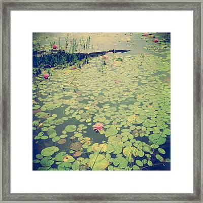 Still Waters Framed Print by Joy StClaire