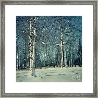 Still Winter Framed Print by Priska Wettstein