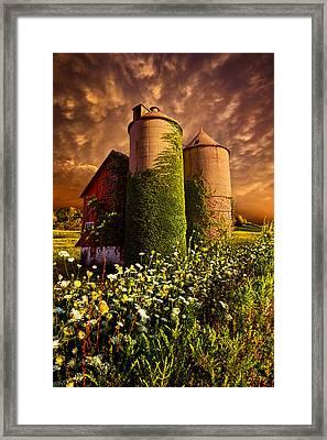 Stillness Of Dawn Framed Print by Phil Koch