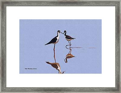 Stilts In The Blue Framed Print by Tom Janca