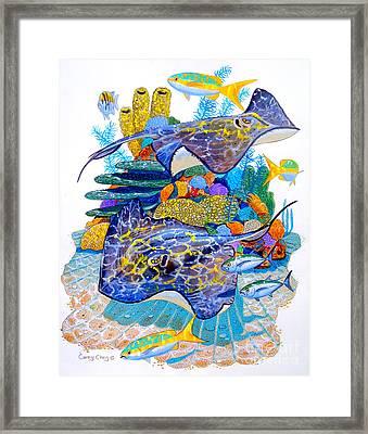 Stingray Play Framed Print by Carey Chen