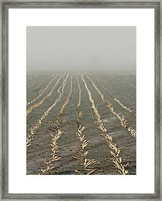 Stitches Framed Print by Odd Jeppesen