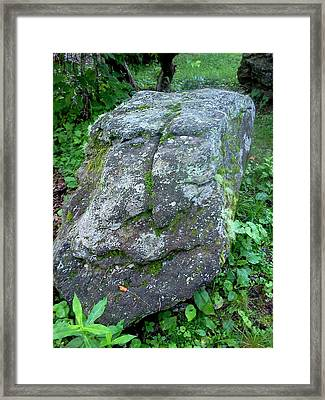 Stone Face Framed Print by Stacy C Bottoms