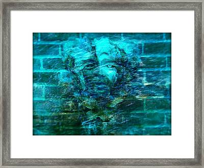 Stone Face Under The Water Framed Print by Lilia D