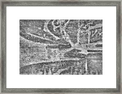 Stone Texture Framed Print by Tom Gowanlock