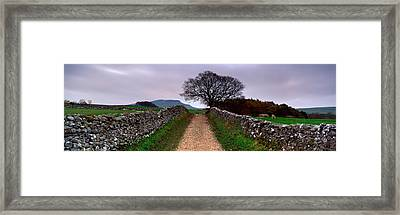 Stone Walls Along A Path, Yorkshire Framed Print by Panoramic Images
