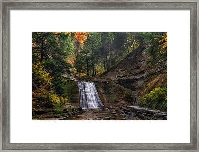 Stony Brook Park Framed Print by Mark Papke