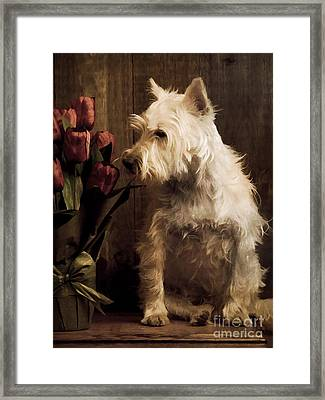 Stop And Smell The Flowers Framed Print by Edward Fielding