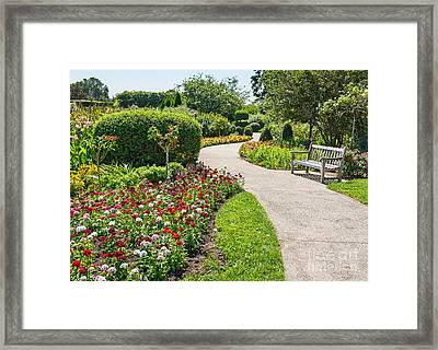 Stop And Smell The Roses Framed Print by Jamie Pham