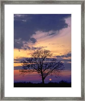 Stop Framed Print by David and Carol Kelly
