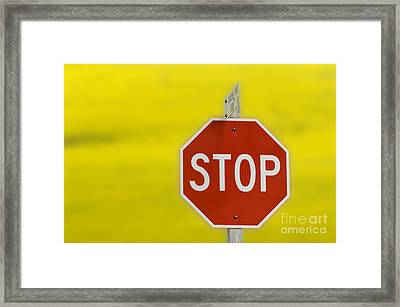 Stop Sign Framed Print by John Shaw