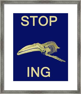 Stop Whaling  Framed Print by Eric Kempson