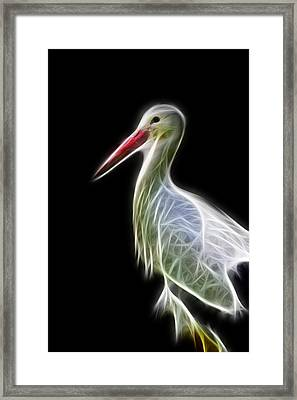 Stork Fractal Framed Print by Pati Photography