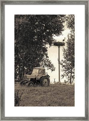 Stork Vs Tractor Framed Print by Yevgeni Kacnelson