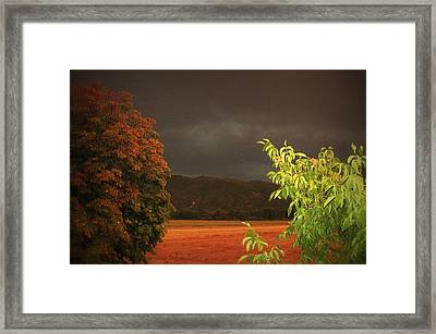 Storm Coming Framed Print by Flow Fitzgerald