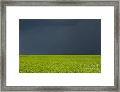 Storm Field Abstract Framed Print by Tim Gainey