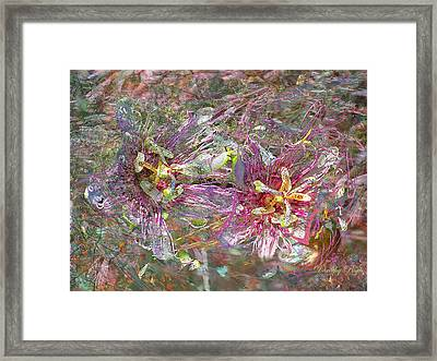 Storm In The Garden Framed Print by Dorothy  Pugh