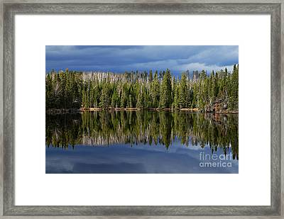 Storm Reflections Framed Print by Larry Ricker