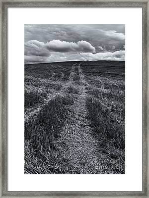 Storm Tracks Framed Print by Mike  Dawson