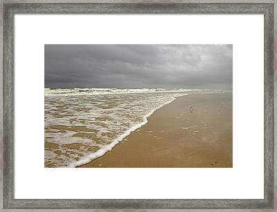 Stormy Day On Topsail Framed Print by Betsy Knapp