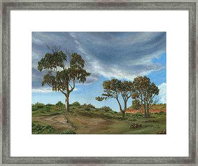 Stormy Eucalyptus Framed Print by Angeles M Pomata