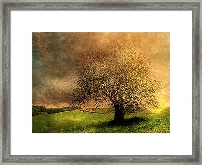 Stormy Weather Framed Print by Georgiana Romanovna
