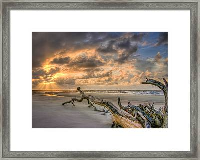 Stranded Framed Print by Steve DuPree