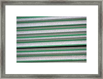 Straw Green Framed Print by Carol Lynch