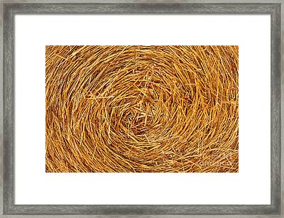 Straw Texture Framed Print by Carlos Caetano