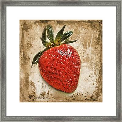 Strawberry  Framed Print by Barbara Orenya