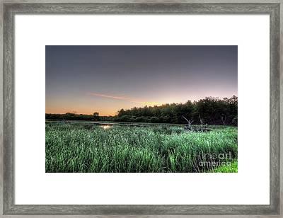 Streaky Swamp Sunrise Framed Print by Deborah Smolinske